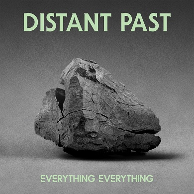 Everything Everything - Distant Past 7 inch vinyl