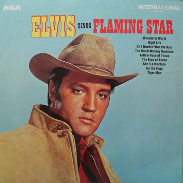 Elvis Presley - Flaming Star 12 Inch Vinyl