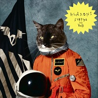 Klaxons - Surfing The Void 12 Inch Vinyl