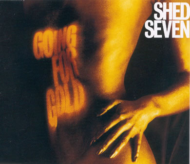 Shed Seven - Going For Gold 7 Inch Vinyl