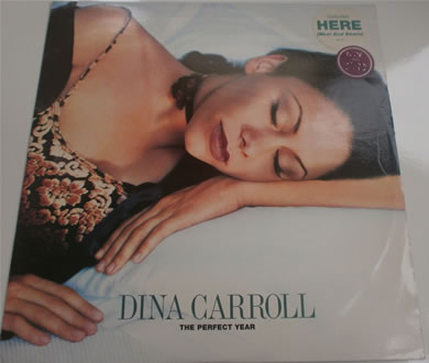 Dina Carrol - The Perfect Year 12 inch vinyl